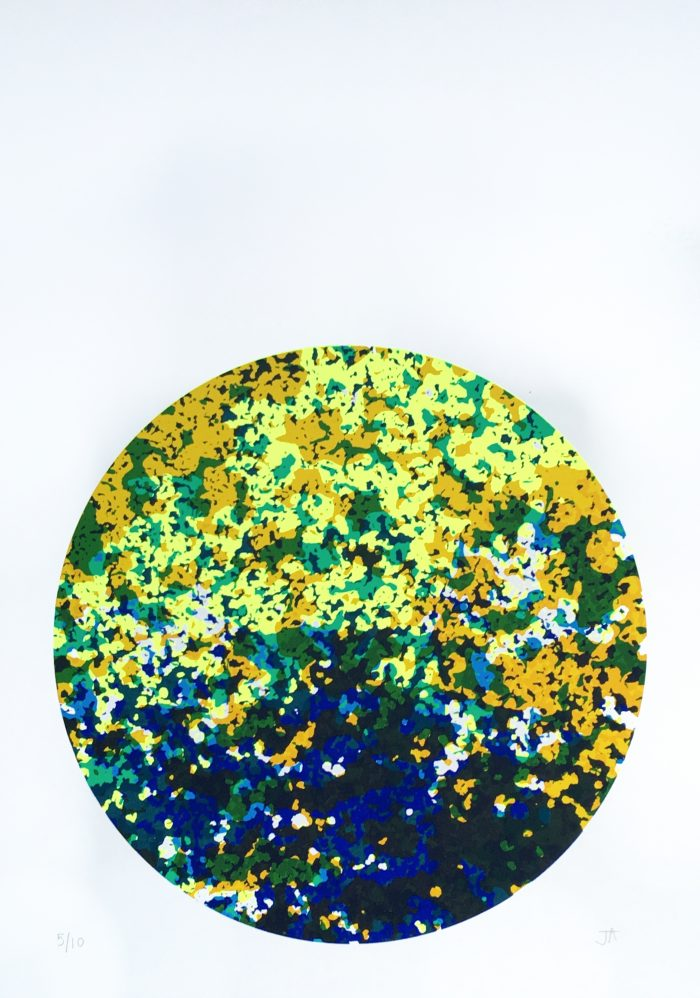 Visual Matter 2 (2018) Jenni Allen, Screenprint, 29.7 x 42cm