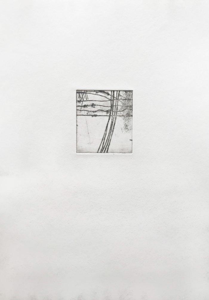 Common Ground I (2019) Lina Avramidou, Etching, 21 x 30cm