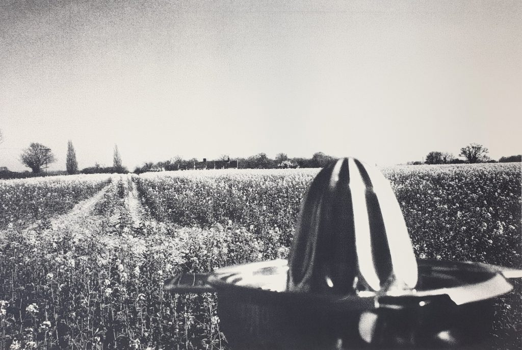Homecoming by Theadora Ballantyne-Way, Screenprint, original prints