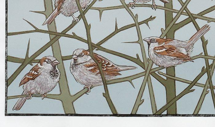Spuggies (2020) Colin Blanchard, Linocut & Screenprint, 70 x 57cm