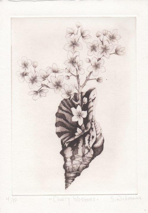 Cherry Blossoms - Susanna Widmann - Discover Contemporary Art Prints & Printmaking