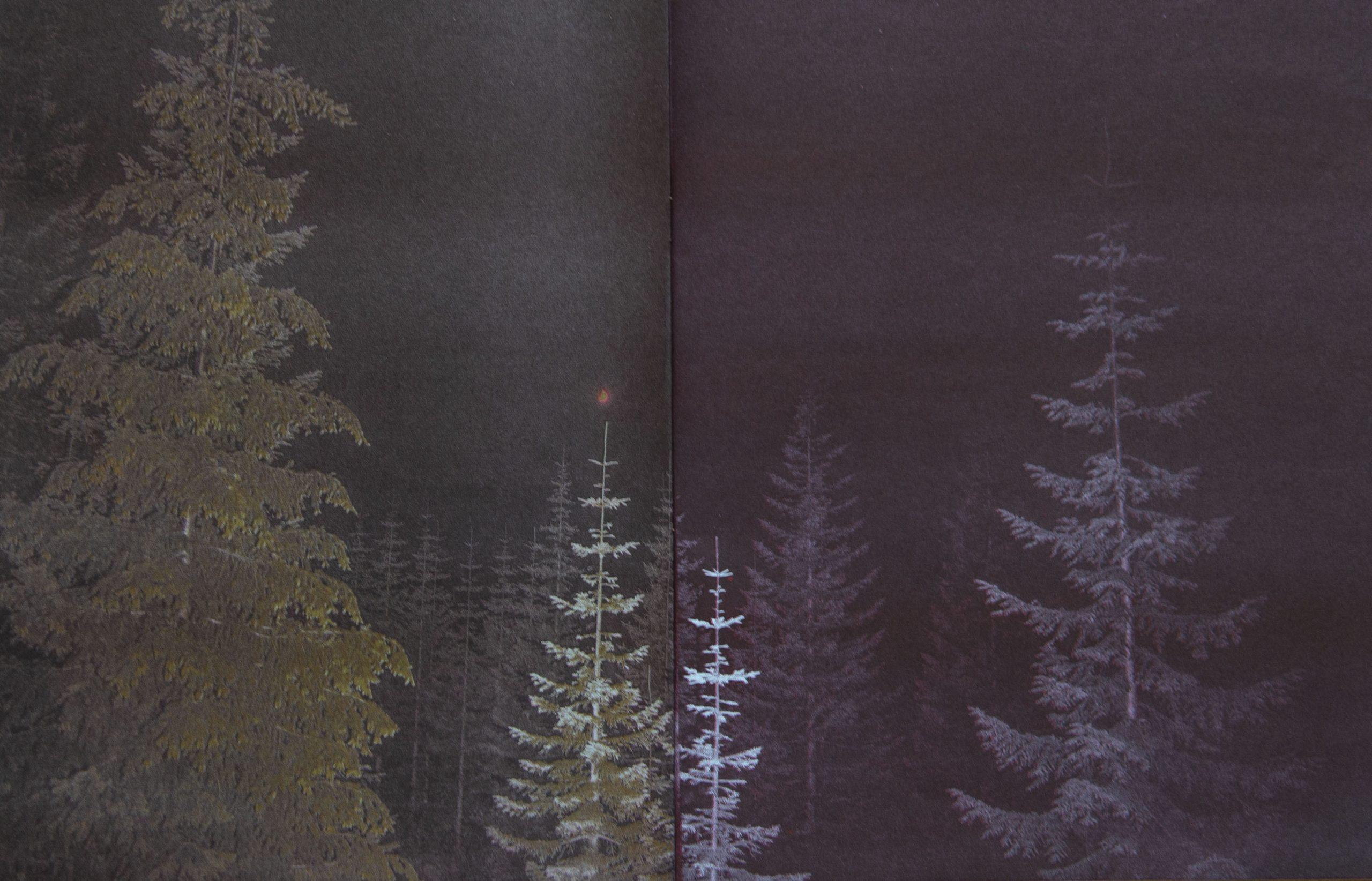 FireMoon,RisographDiptych25x41cm2019